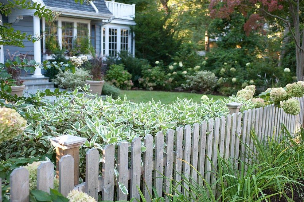 Pflanzen für Vorgarten-Ideen
