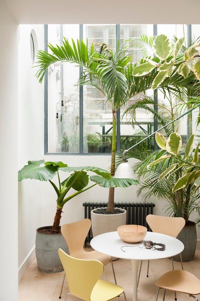 Wintergarten fensterprofil wärme tropisch atmosphäre ideen