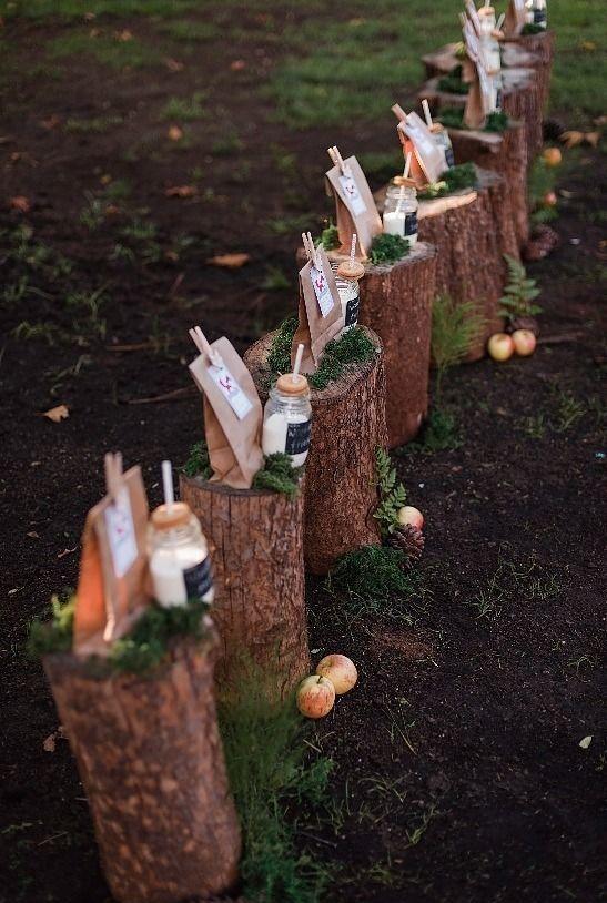 tolle Geschenkidee Gartenparty Überraschung Baumstümpfe