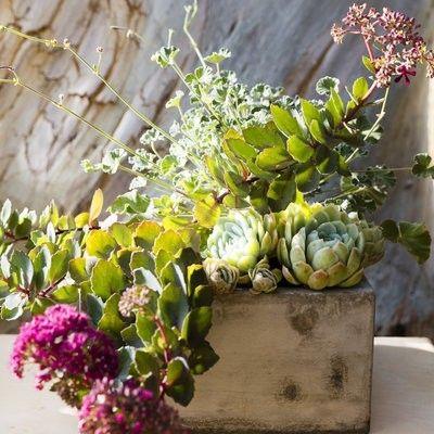 Blumenbehälter interessant idee