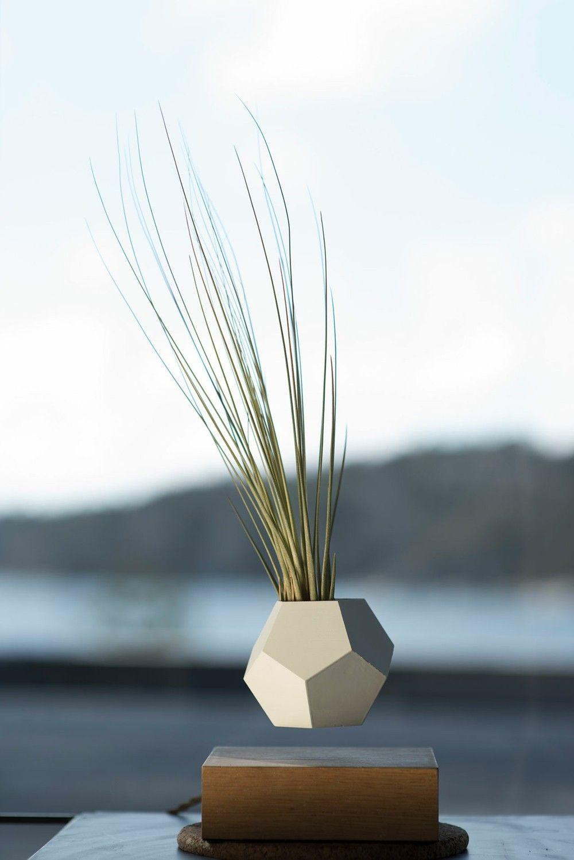 Deko Idee Außenbereich Blumentopf Levitation Ziergras