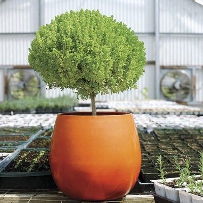 Garten deko ideen blumenbehälter
