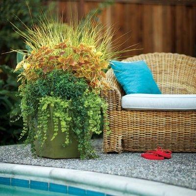 Gartengestaltung Ideen Gartenbank Blumenbehälter