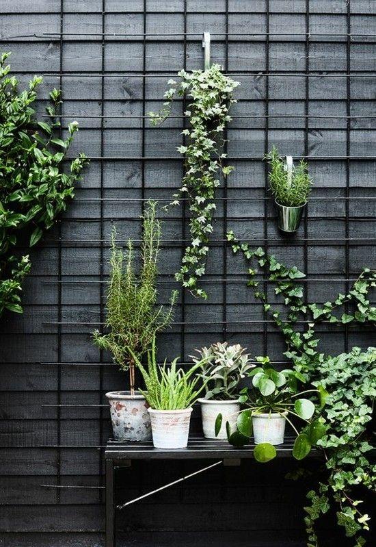 Die gr ne wand bringt ein st ck natur auf ihren balkon oder auf die gartenterrasse - Holzkisten wand ...
