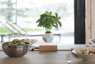 Der Schwebende Blumentopf LYFE U2013 Ein Toller Akzent In Der Modernen Wohnung    Trendomat.com