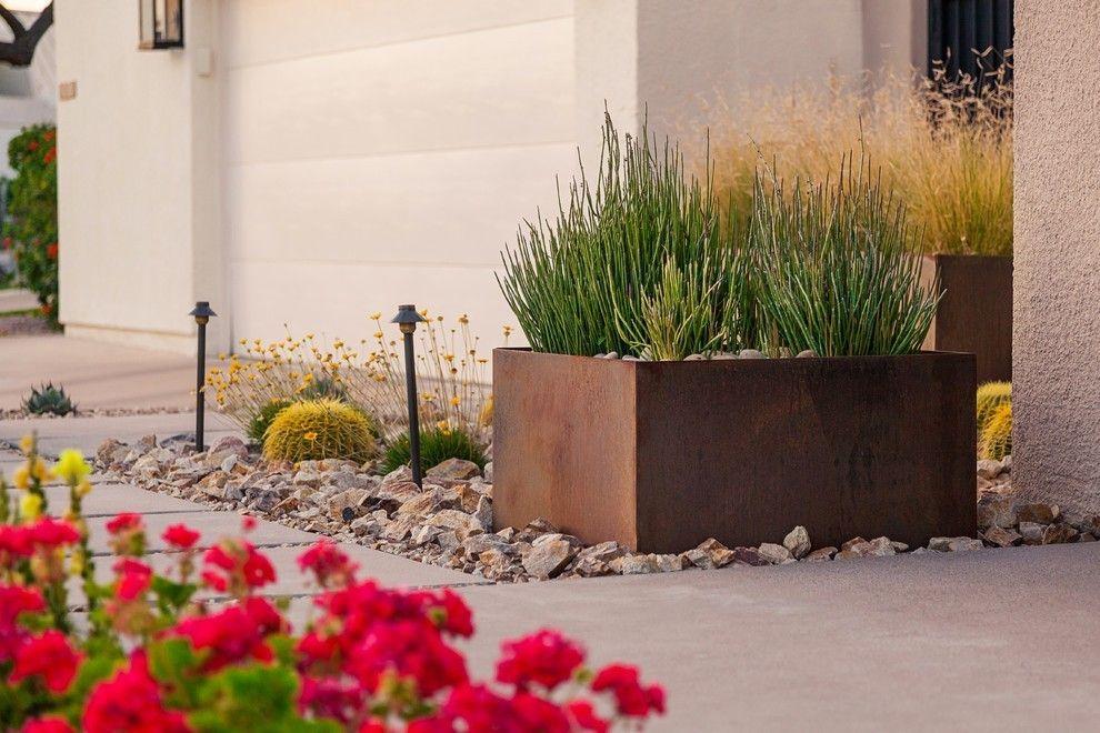 Outdoor Gestaltungsideen Sukkulente in großem Topf in Braun