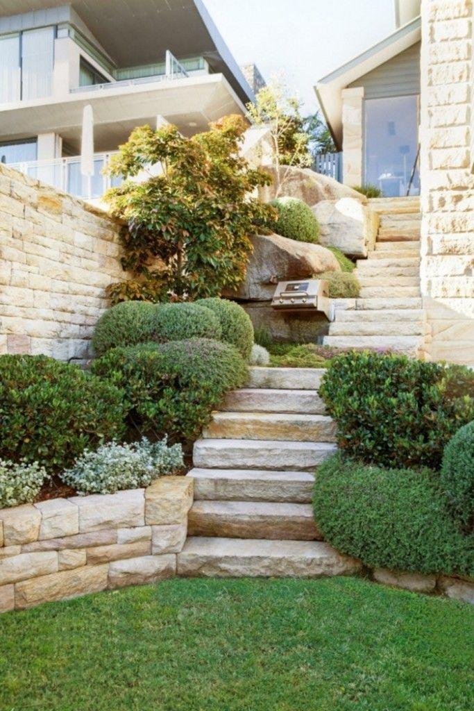 Pflanzen für Steingarten