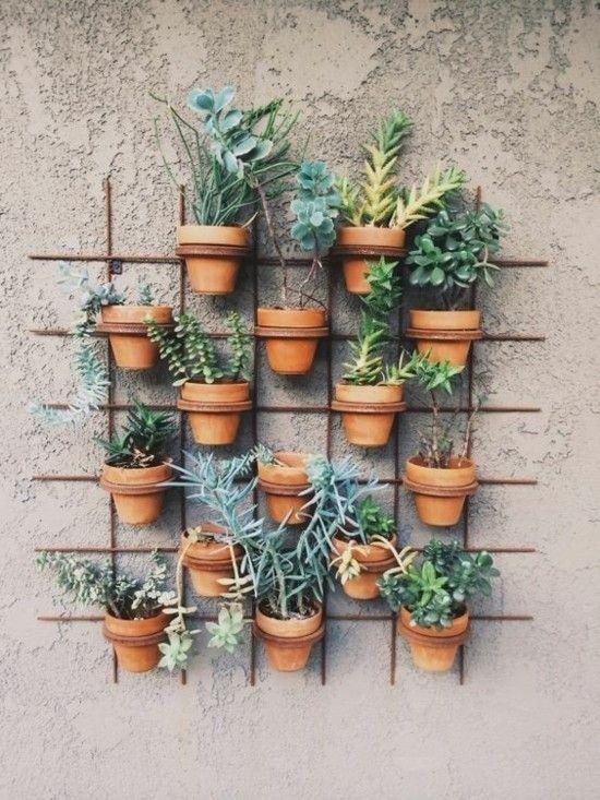 Vertikale Grüne Wand Terrasse Ideen