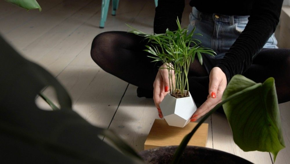 moderne Deko schwebender Blumentopft LYFE Design 2016