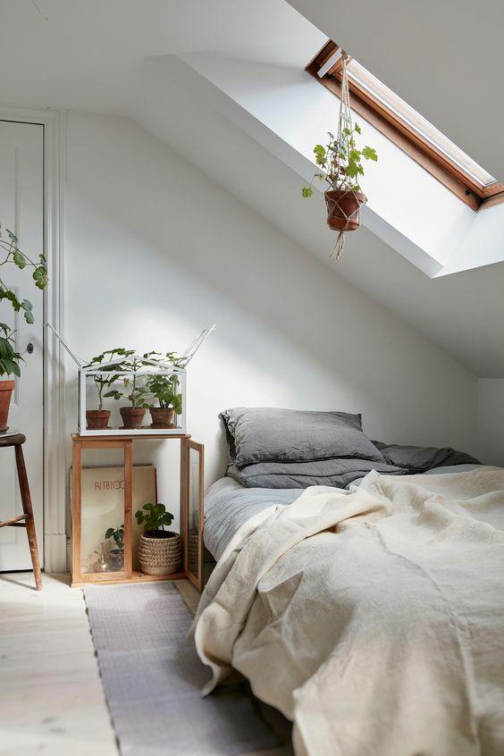 dachgeschoss-schlafzimmer-dachfenster-zimmerpflanzen