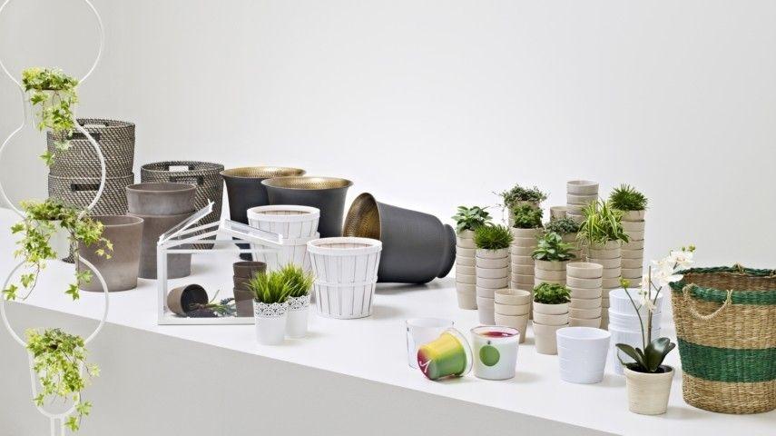 Indoor Garten Wohlfuhloase Wohnung Begrunen – usblife.info