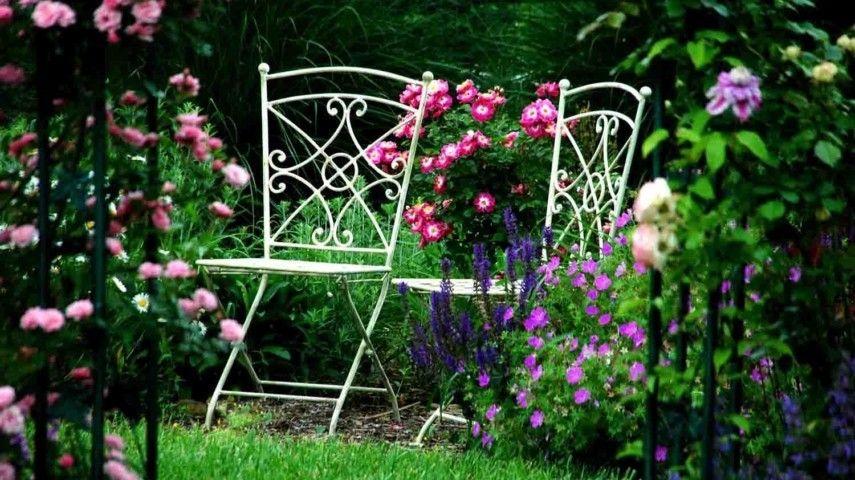 Typische Herbstblumen Und Graser Die Den Garten In Der