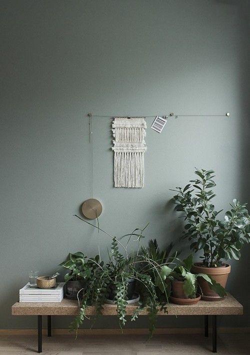 Die kraft der wandfarben in der raumgestaltung entdecken for Zimmerpflanzen trend 2016