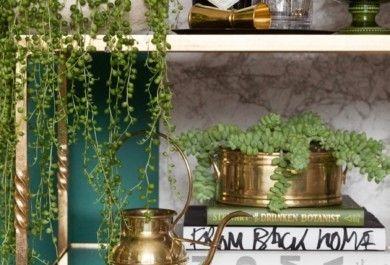 Indoor garten anlegen geeignete pflanzen ruhevollen indoor for Deko ideen pflanzen