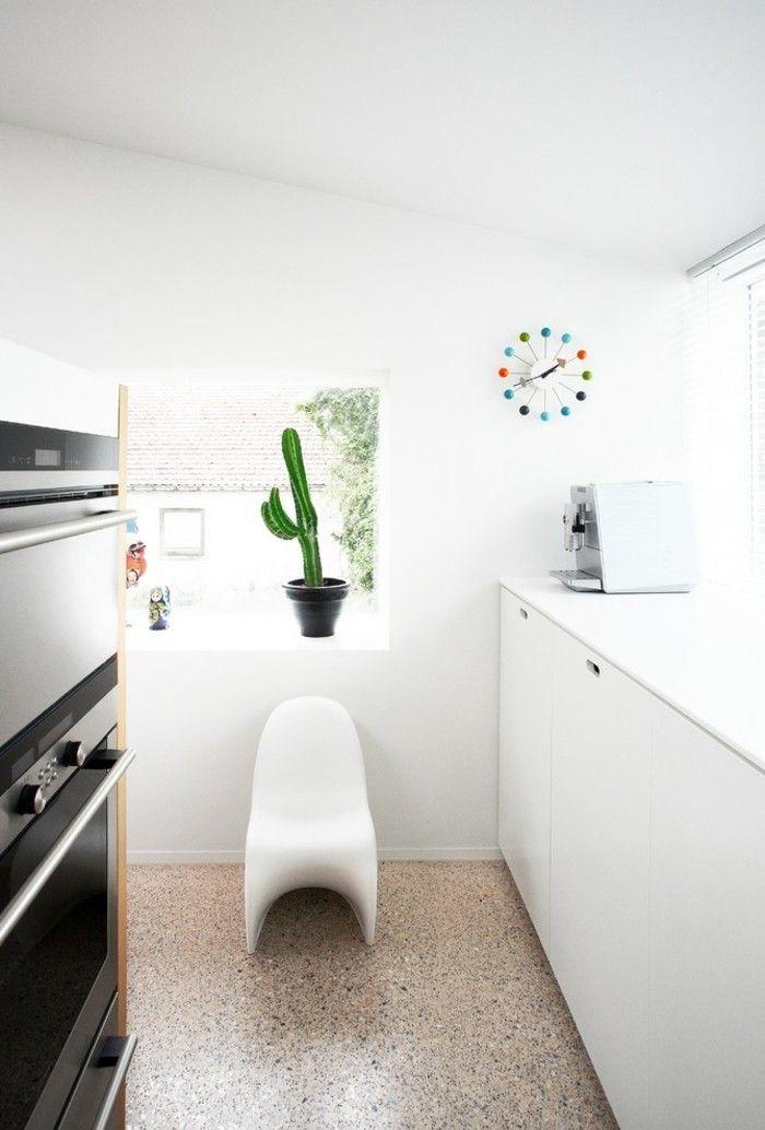 perfekte-zimmerpflanzen-kaktus-am-fenster-moderne-kuche