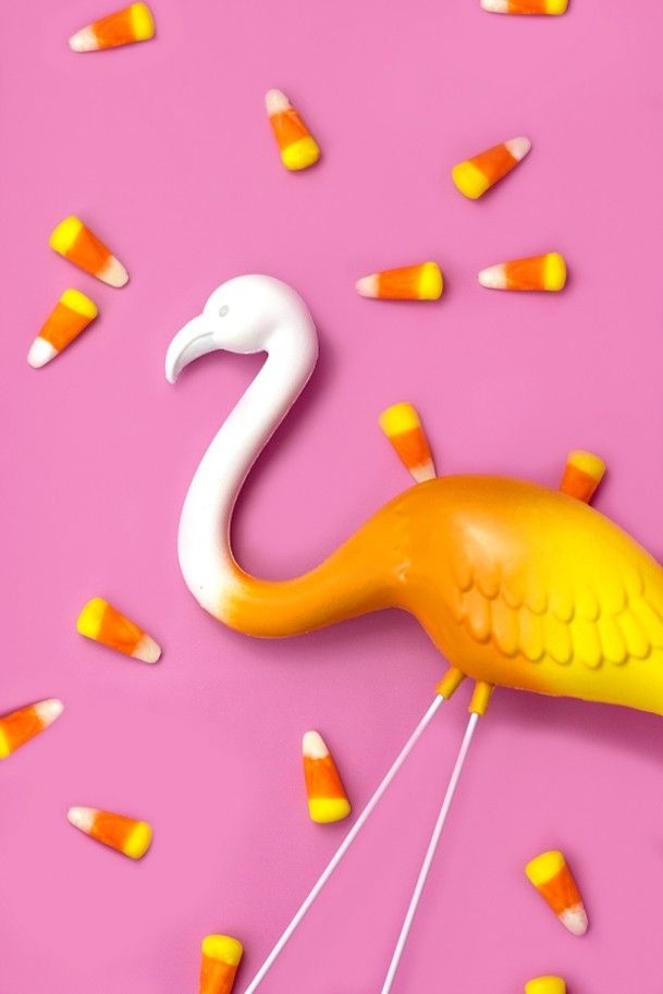 ein-so-schoner-flamingo-halloween-deko-ideen