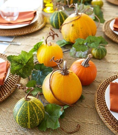 kurbis-pumpkin