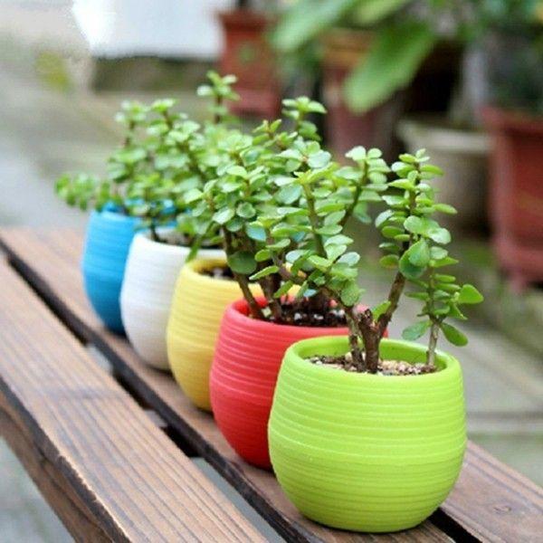 pflanzenkubel-in-schonen-farben