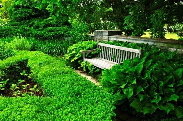 blutenpracht-und-viel-grun-haus-und-gartenbau