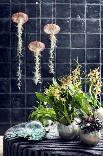orchideen-deko