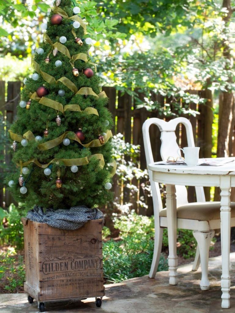 weihnachtsbaum-im-garten