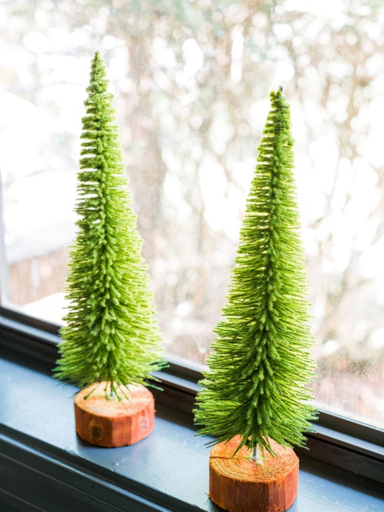 winter-zimmerflanzen-christmas