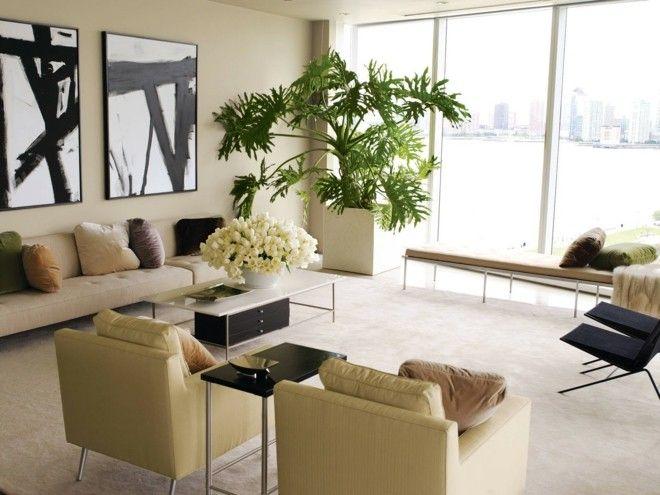 zimmerblumen-erfrischen-das-raumklima-und-sind-auch-im-neuen-jahr-ein-muss-in-jedem-interieur