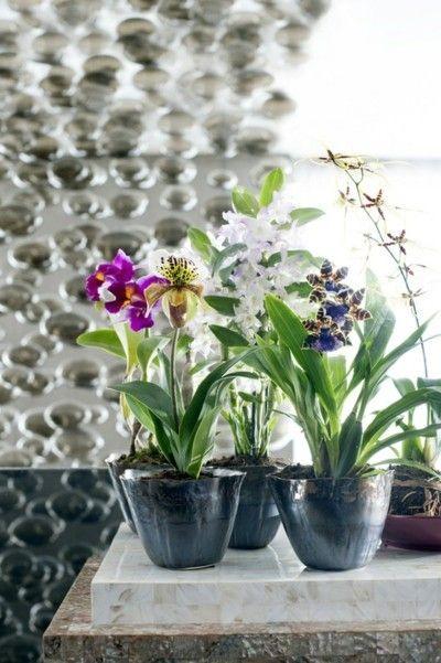 deko-mit-blumen-orchideen-glamour