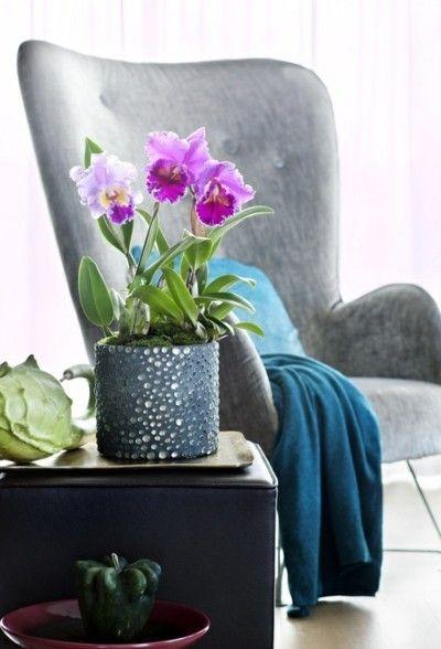 deko-mit-orchideen-moderne-gestaltung