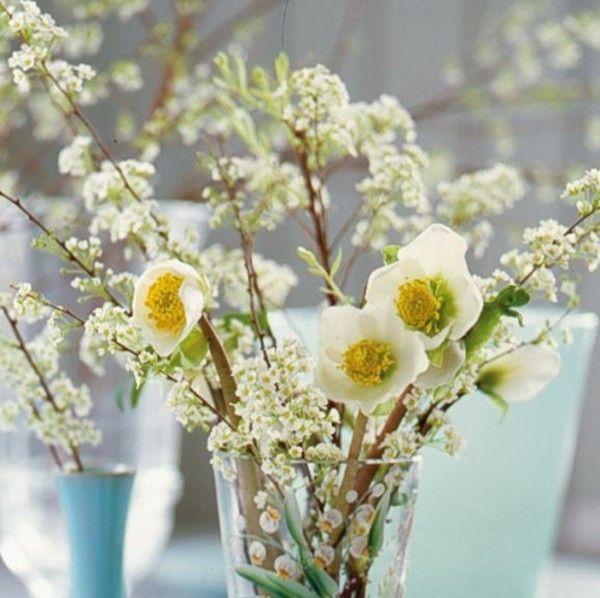 christrose-vase