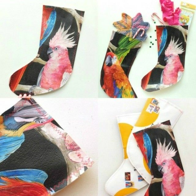 papagei-vogel-bunt-exotisch