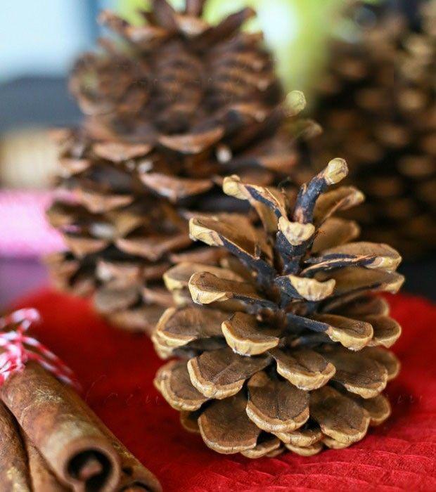 tannenzapfen-frisches-aroma-weihnachten