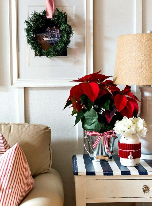 weihnachtsstern-rote-blatter-weise-christrosen