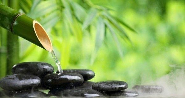 ein-bambusbrunnen-ist-fur-diesen-bereich-gut-geeignet