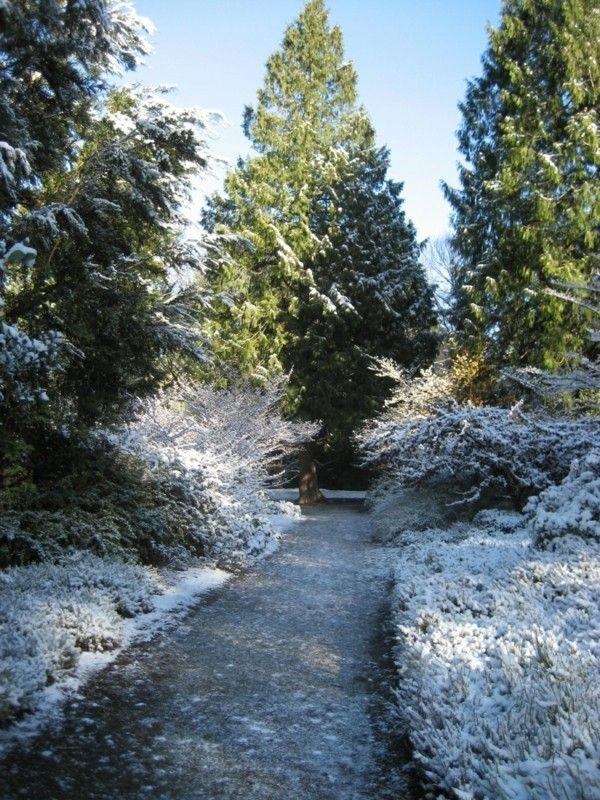 Gartengestaltung Ideen winterliche Landschaft