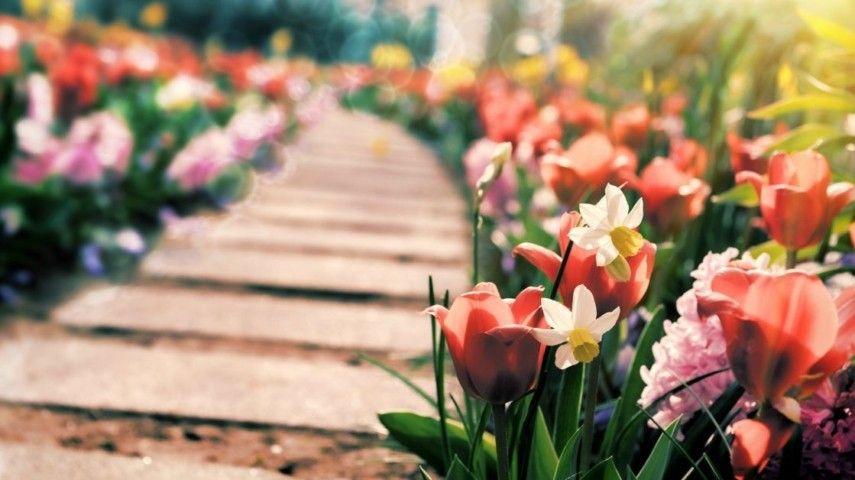 Gartenwege gestalten – Tricks der Gartengestaltung - Trendomat.com