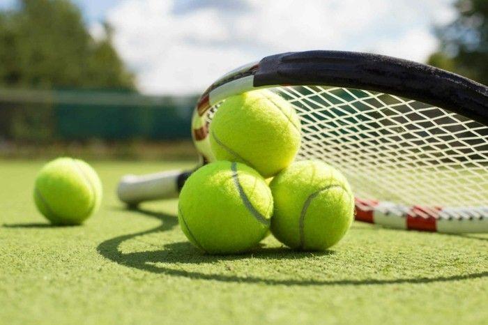 Löwe dynamische Natur aktive Sportbetätigungen Tennis spielen ein paar Mal - Woche