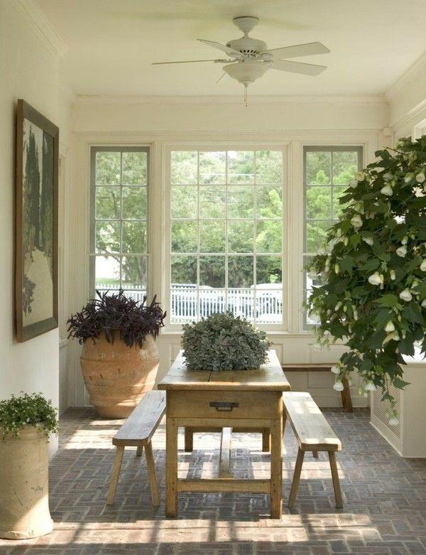 Pflanzen Terrakotta Blumentöpfe