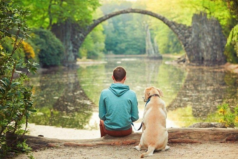 sich erholen am See Ruhe genießen Relax- mit dem Hund lange Spaziergänge im Park die Natur bewundern