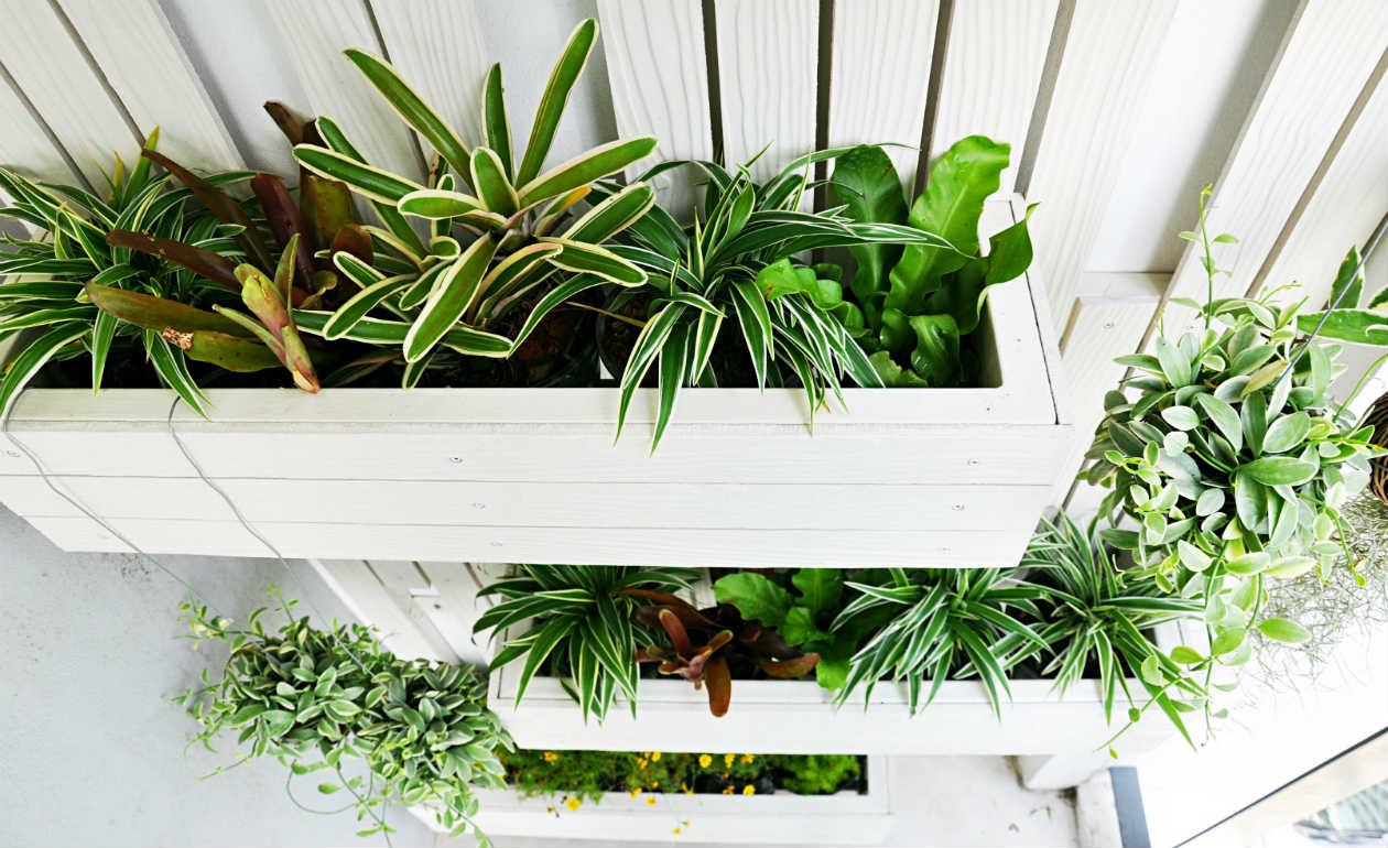 think green 15 ideen f r einen vertikalen garten zu hause. Black Bedroom Furniture Sets. Home Design Ideas