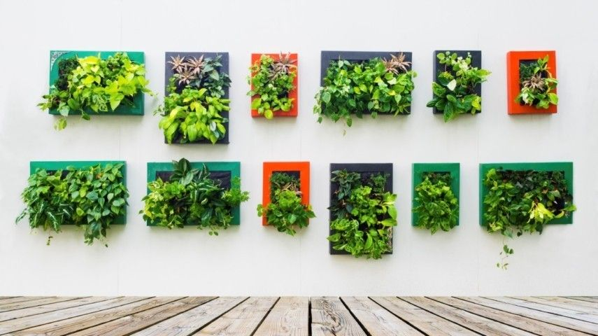 Think green 15 ideen f r einen vertikalen garten zu hause for Atemberaubende gartenideen