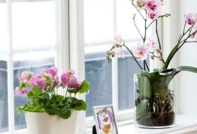 Fensterbank Deko Ideen Die Jedes Ambiente Auffrischen Trendomat Com