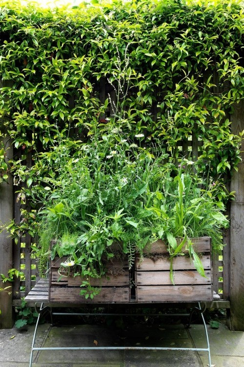 frische ideen f r einen kleinen stadtgarten gestalten. Black Bedroom Furniture Sets. Home Design Ideas